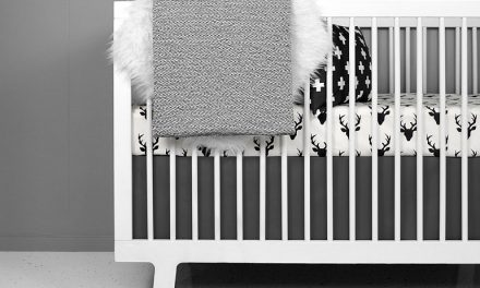 Crib Bedding brand review: Olli + Lime
