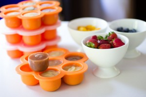 Popfex silicone storage container and freezer tray