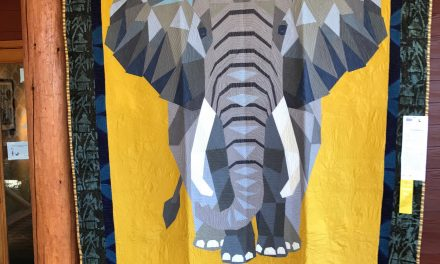 Quiltapalooza! The Top 100 Best Quilts from the Sisters Outdoor Quilt Show
